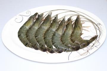 Raw Head-on Shell-on Black  Tiger Shrimp